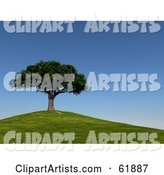 3d Tree Clipart by ShazamImages