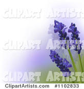 Lavender Flowers over White Purple and Green Gradient