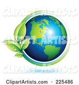 Shiny Green and Blue American Globe Circled with Blue and Green Lines and Dewy Leaves