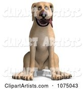 3d Yellow Lab Clipart by Ralf61