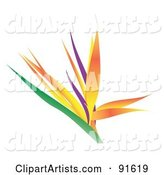 Bird of Paradise Clipart by Arena Creative