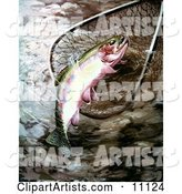 A Golden Trout in a Fishing Net