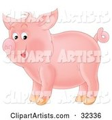 Adorable Pink Pig with a Curly Tail, Standing in Profile