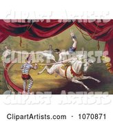 Circus Acrobat Doing a Hand Stand on a Horse