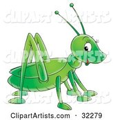 Cute and Friendly Green Grasshopper Glancing at the Viewer