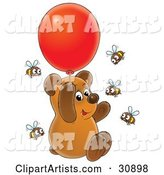 Cute Brown Bear Cub Floating up into the Air and Holding onto a Red Helium Party Balloon, Surrounded by Curious Honey Bees