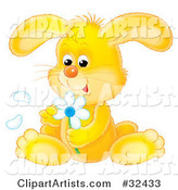 Cute Yellow Bunny Rabbit Sitting and Picking Petals off of a White Daisy Flower