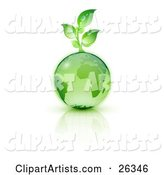 Green Seedling Plant Sprouting from a Green Earth over a Reflective White Surface