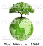 Lush Green Tree Growing on Top of the Green Earth with a Grassy Texture, over White