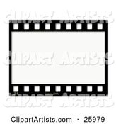 One Black and White Negative Photography Film Strip