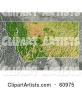 Shaded Relief Map of the State of Montana
