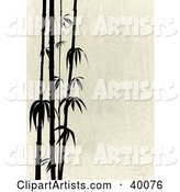 Stalks of Black Silhouetted Bamboo on a Beige Stone Background