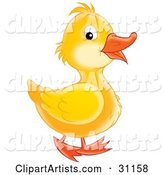 Duck Clipart by Alex Bannykh