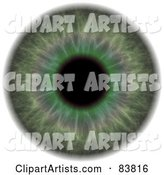 Eye Clipart by Arena Creative