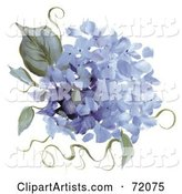 Hydrangea Clipart by Inkgraphics
