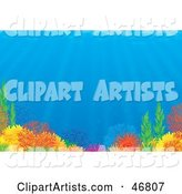 Reef Clipart by Alex Bannykh
