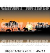 Safari Clipart by Pauloribau