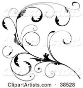 Scroll Clipart by Dero