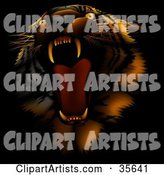 Tiger Clipart by Dero
