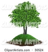 Tree Clipart by Frog974