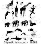 Vector Animals Clipart by Rasmussen Images