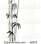 Vector Bamboo Clipart by Suzib_100