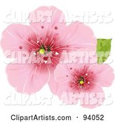 Vector Blossoms Clipart by Pushkin
