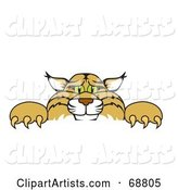 Vector Bobcat Character Clipart by Toons4Biz