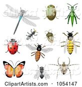 Vector Bugs Clipart by Vectorace