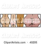 Vector Butt Clipart by Dennis Holmes Designs