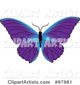 Vector Butterfly Clipart by Rogue Design and Image