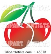 Vector Cherry Clipart by Pauloribau