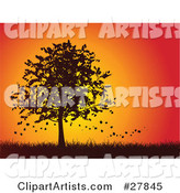 Autumn Leaves Falling off of a Silhouetted Maple Tree in a Grassy Landscape Against an Orange and Red Sunset