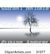 Bare Silhouetted Tree Reflecting on Still Waters, Against a Blue Sky Background