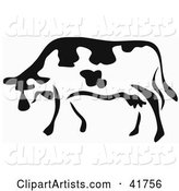 Black and White Paintbrush Stroke Styled Cow