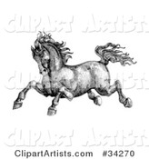 Black and White Pen and Ink Drawing of a Muscular Victorian Horse Running to the Left