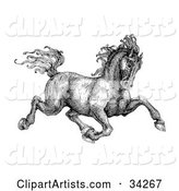Black and White Pen and Ink Drawing of a Muscular Victorian Horse Trotting to the Right