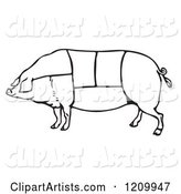 Black and White Pig with Butcher Sections of Meat Cuts