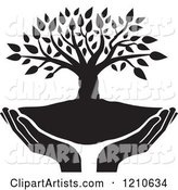 Black and White Tree and Uplifted Hands