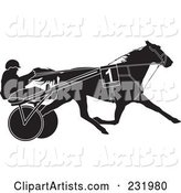 Black and White Trotter Horse