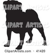 Black Silhouetted Pug Dog Profile