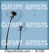 Blue Dandelion Seed Head Background with Pieces Blowing Away