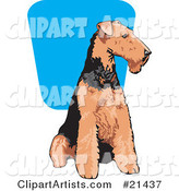 Brown and Black Airedale Terrier Dog Seated and Looking to the Right