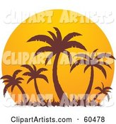 Brown Palm Trees Silhouetted Against a Large Orange at Sunset