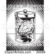 Burst of Bright Light Around a Human Brain Floating in a Jar in a Science Lab