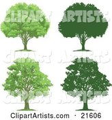 Collection of Lush Green and Mature Trees with Their Silhouettes, on a White Background