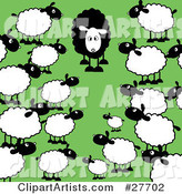 Crowd of Regular White Sheep Staring in Awe at a Different Black Sheep in a Green Pasture