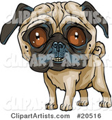 Cute Pug Dog Grinning at the Viewer