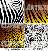 Digital Collage of Four Zebra, Tiger, Leopard and Cheetah Print Backgrounds