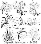 Digital Collage of Nine Black and White Floral Scroll Design Elements, on White